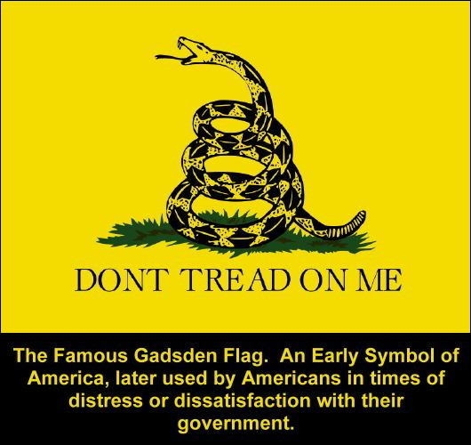 Don't tread on me-Gadsden Flag
